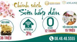 Tặng khách hàng heo vàng may mắn cùng chính sách bán hàng hấp dẫn khi mua Anland Premium
